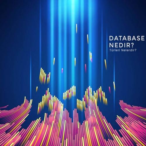 Database (Veri Tabanı) Nedir ?